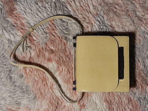 Mini Review: The Row Lizard Shoulder Bag