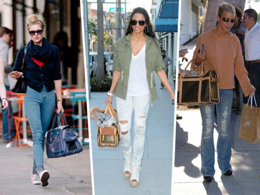 Throwback Thursday: Designer Doggy Bags