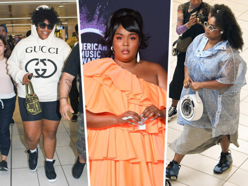 The Many Bags of Lizzo