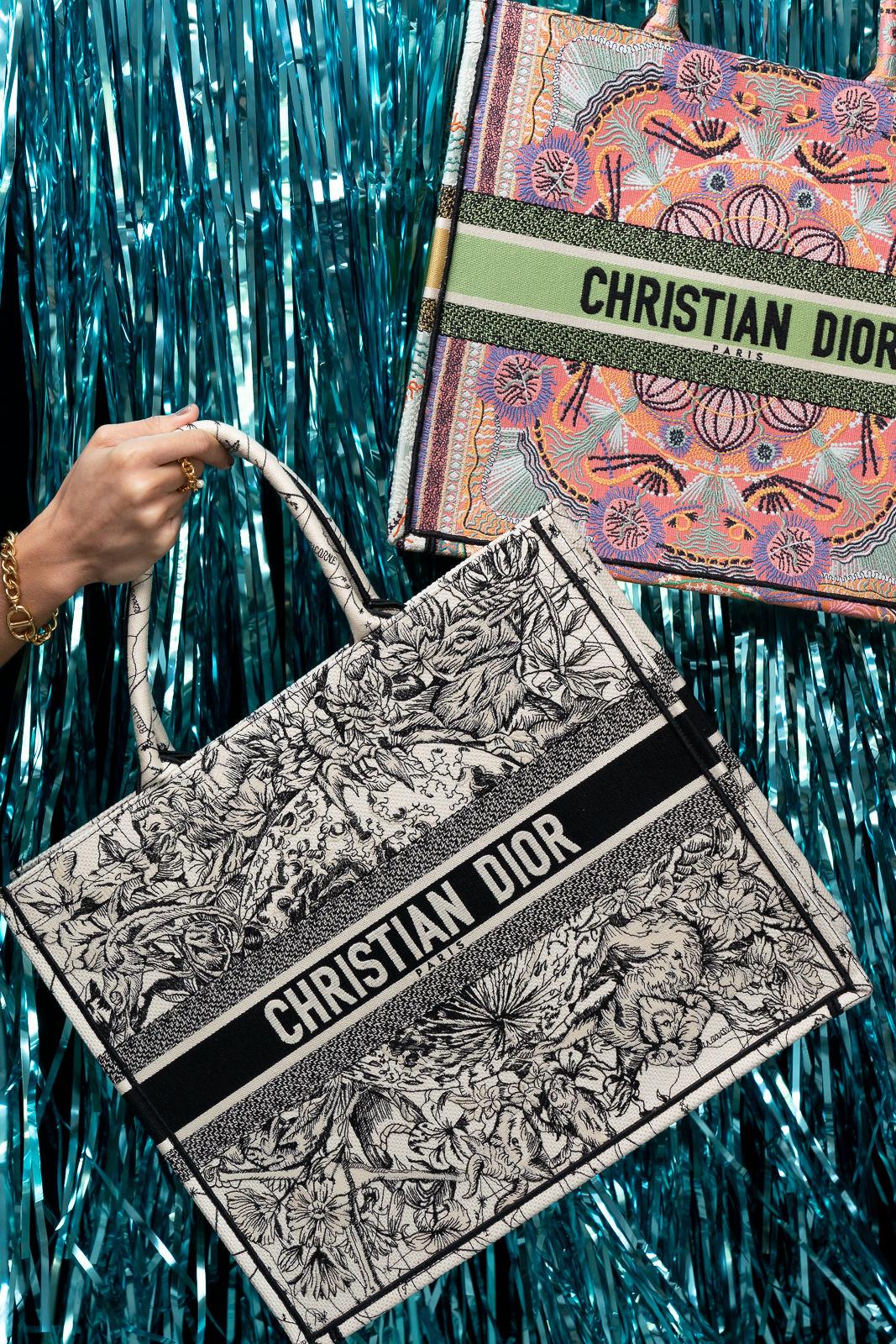 Dior Book Tote in Latte Multicolor & Dior Zodiac Embroidery