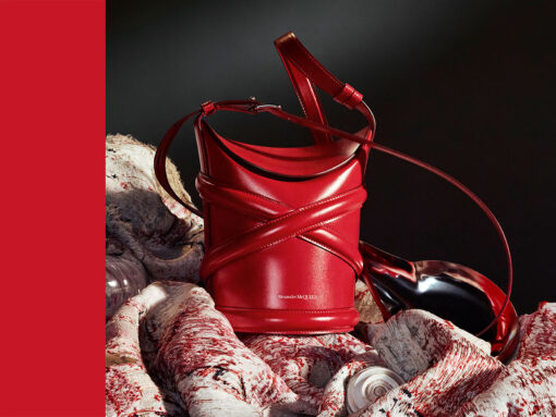 Your Look at the New Alexander McQueen The Curve Bag