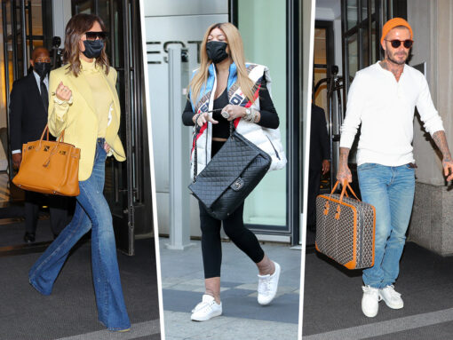 This Week Celebs Overwhelmingly Favored Birkins and Bottega
