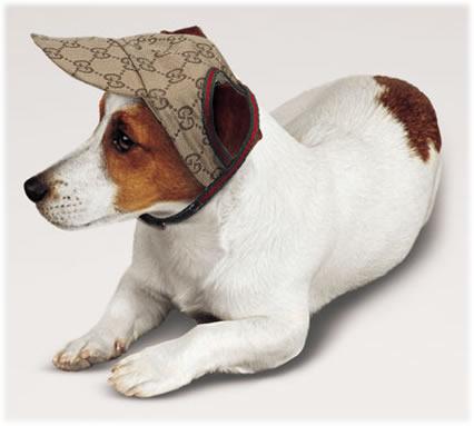 Gucci Pet Baseball Cap