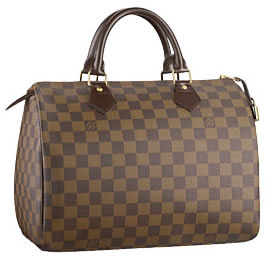 Louis Vuitton Damier Canvas Speedy