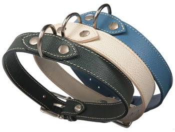 Palmellato Dog Collar
