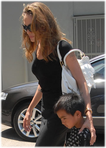angelina jolie botkier bag3