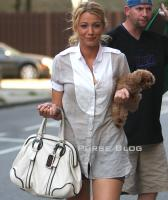 blake lively d and g bag
