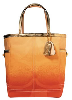Coach Ombre Signature Large Tote Bag