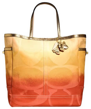 Coach Ombre Weekend Tote
