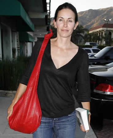 courtney cox bird handbags