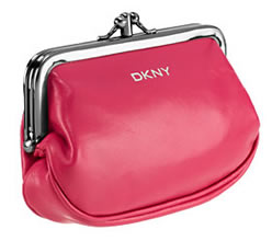 DKNY Frame Coin Purse