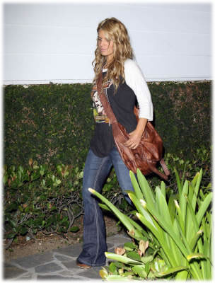 jessica simpson blur mail bag