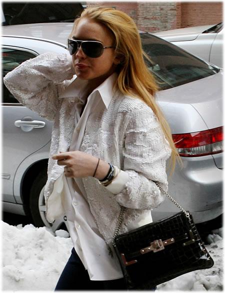 Lindsay Lohan Croc Handbag2