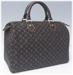 Louis Vuitton Mini Monogram Lin Speedy 30