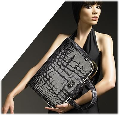 Yves Saint Laurent Crocodile Uptown Bag